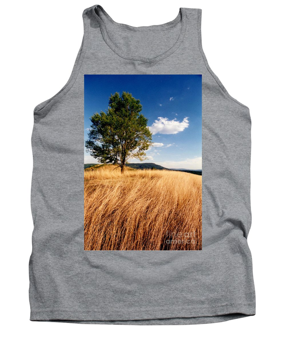 Tree Tank Top featuring the photograph Alone On A Hill by Laura Corebello