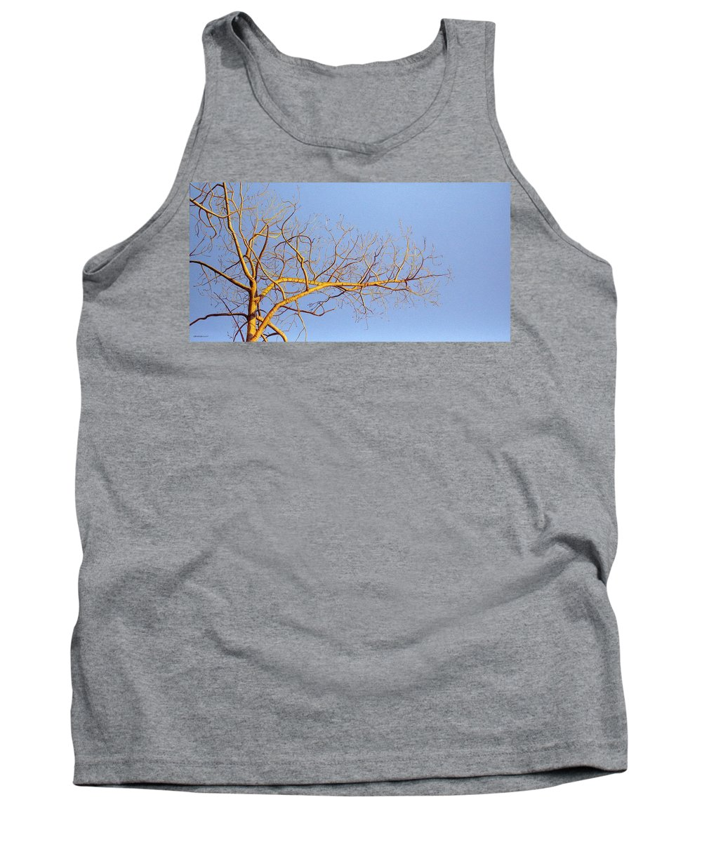Aspen Painting Tank Top featuring the painting Aspen In The Autumn Sun by Elaine Booth-Kallweit