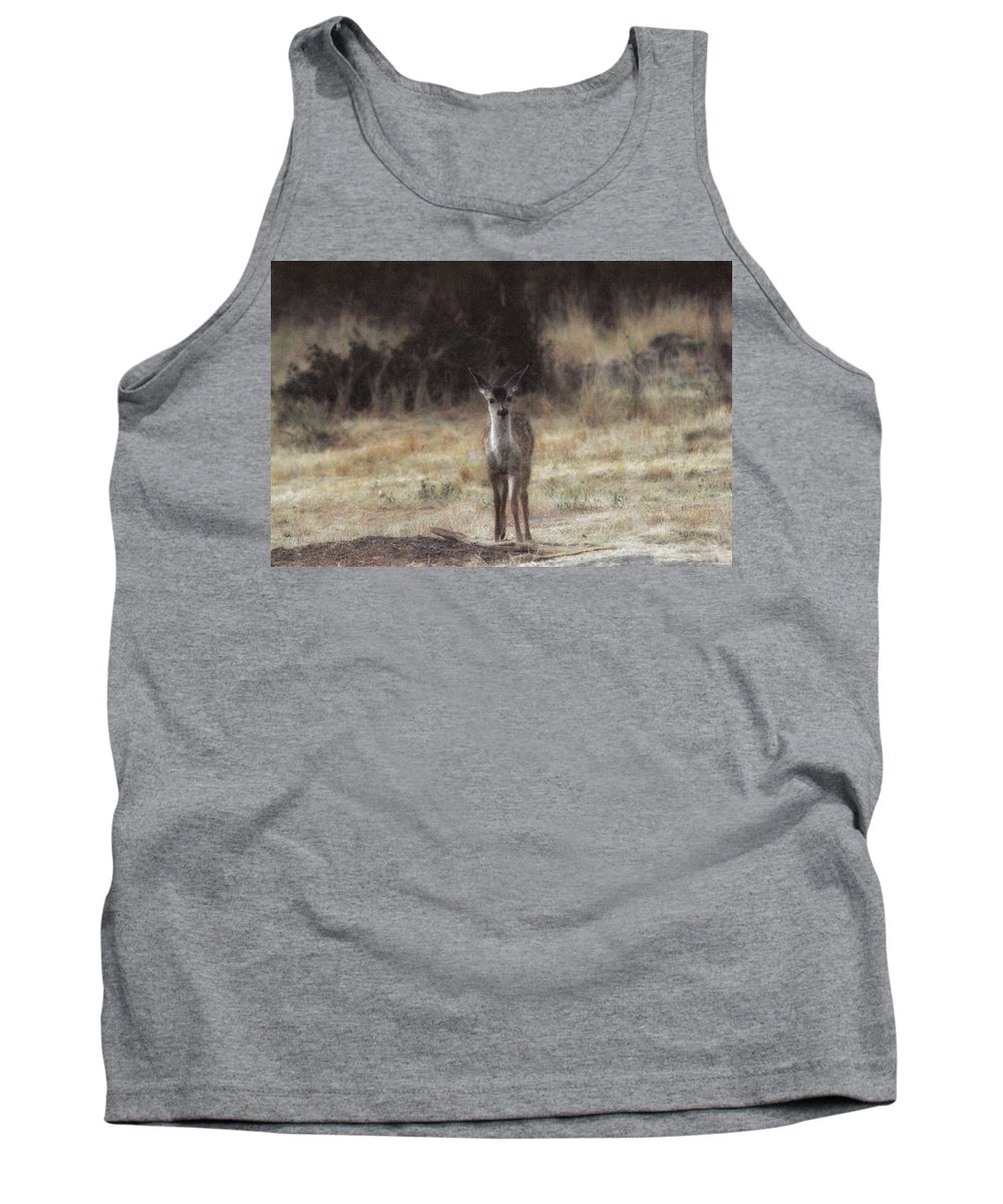Fawn Tank Top featuring the photograph Baby Soft by Donna Blackhall