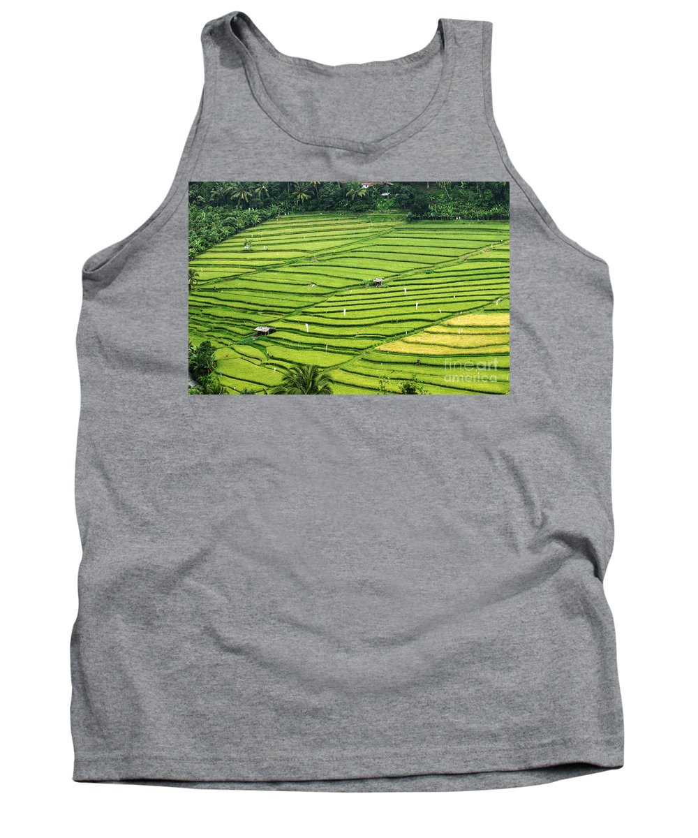 Bali Tank Top featuring the photograph Bali Indonesia Rice Fields by Bob Christopher