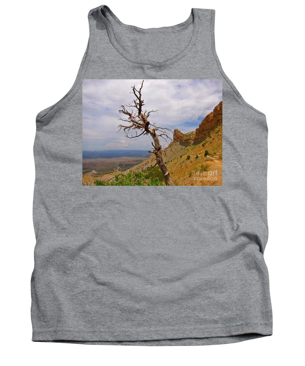 Beauty On High Tank Top featuring the photograph Beauty On High by John Malone