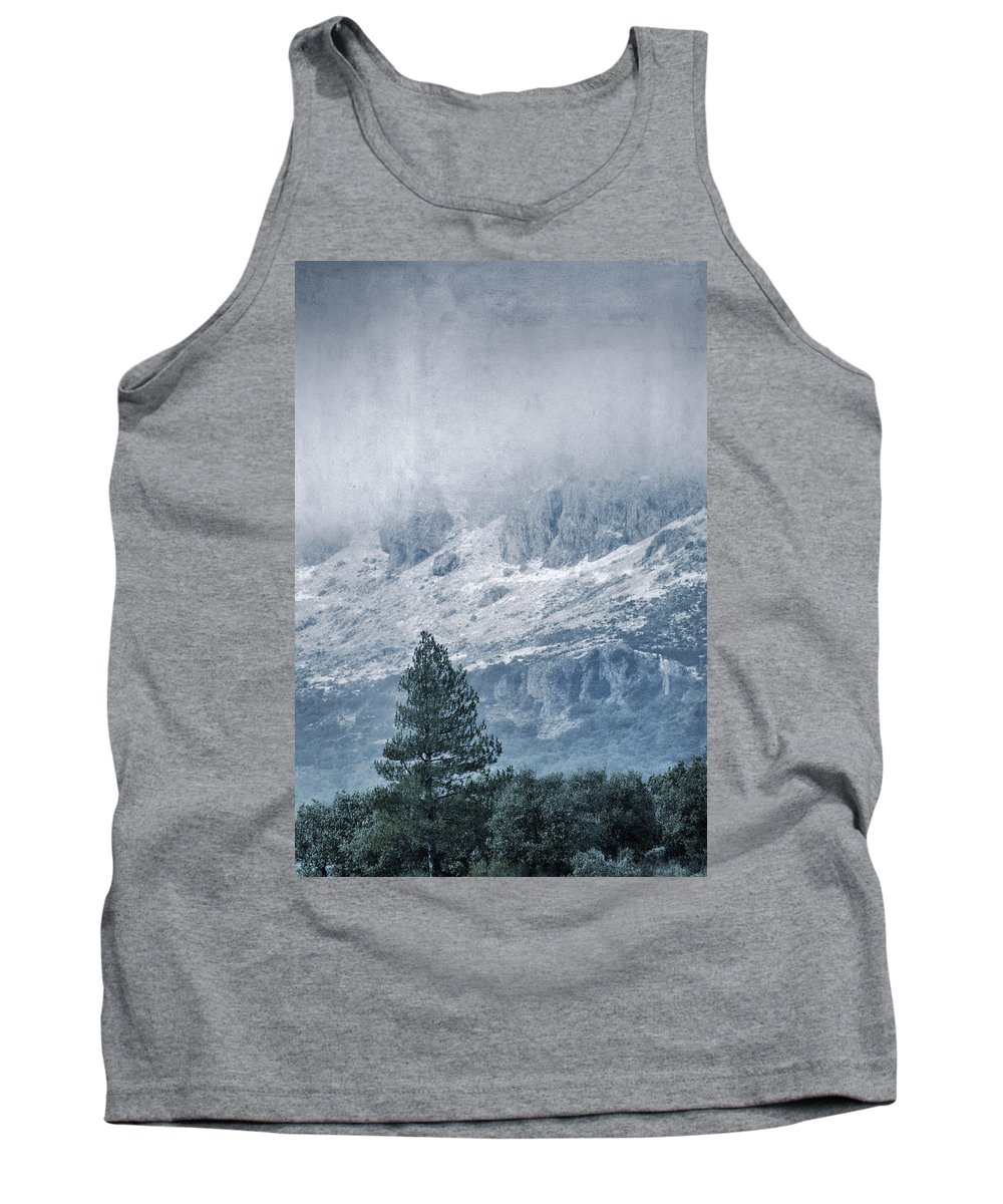 Retro Tank Top featuring the photograph Big Tree At The Mountains by Guido Montanes Castillo