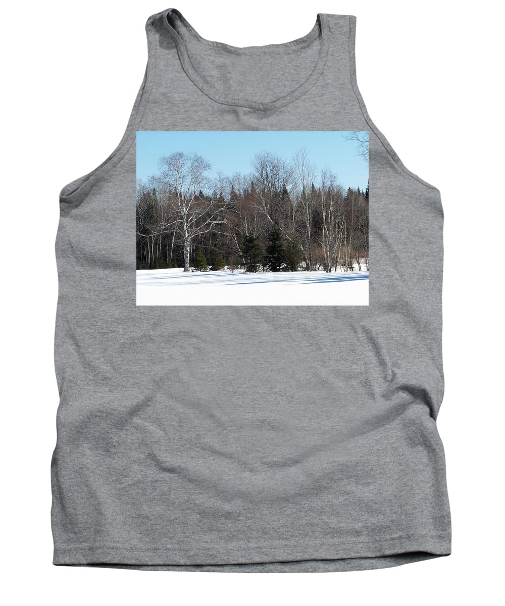 Landscape Tank Top featuring the photograph Birch And Evergreen by William Tasker