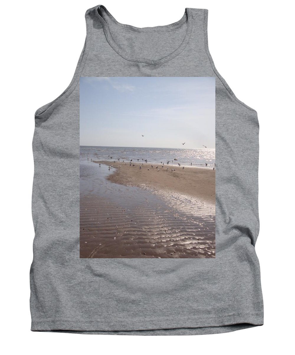 Beach Tank Top featuring the photograph Birds At The Beach At Low Tide by Kim Chernecky