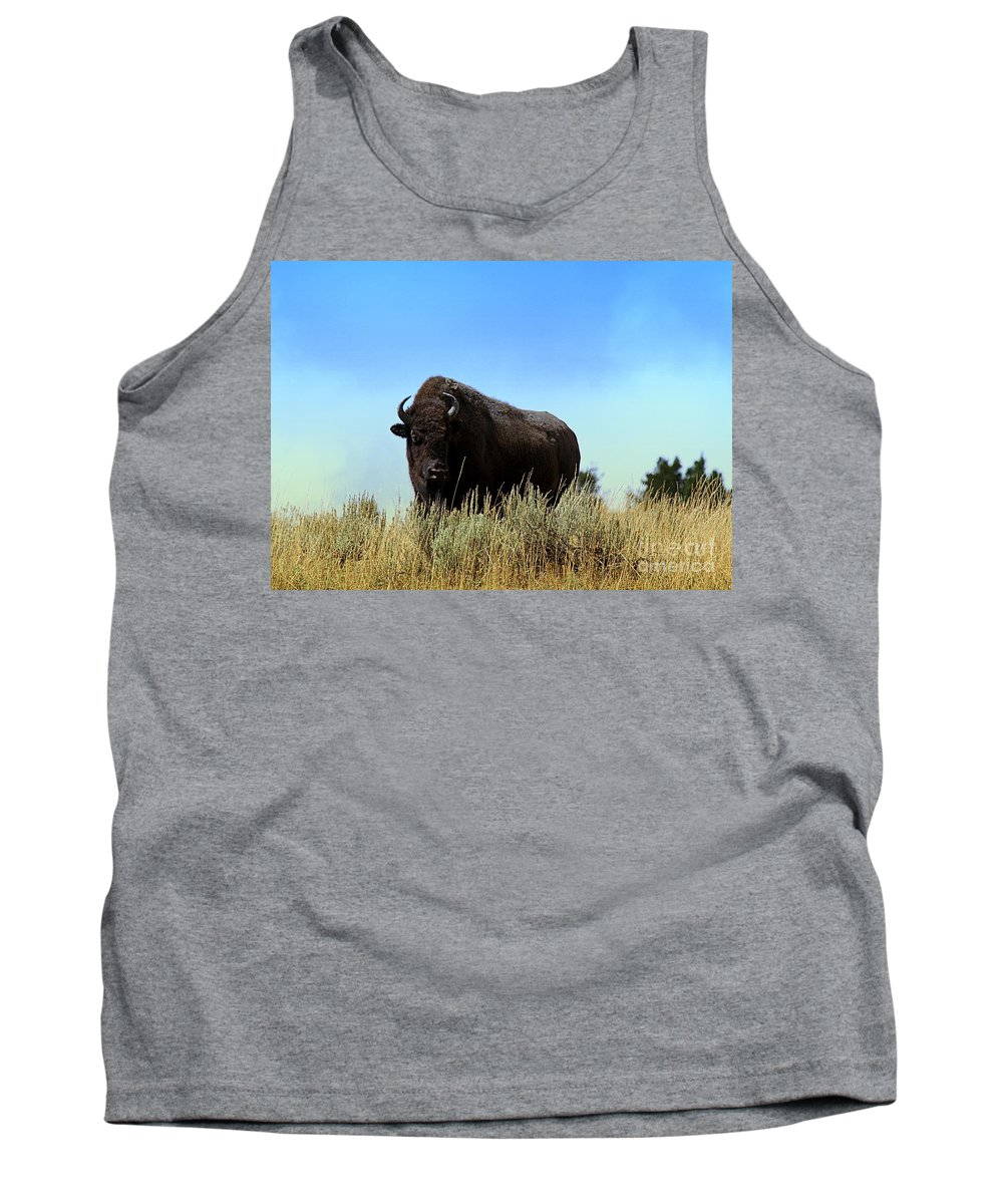 Bison Tank Top featuring the photograph Bison Cow On An Overlook In Yellowstone National Park by Catherine Sherman