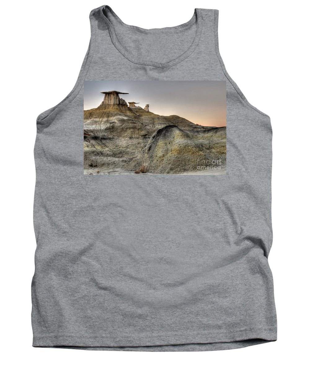Textures Tank Top featuring the photograph Bisti De-na-zin Wings by Vivian Christopher