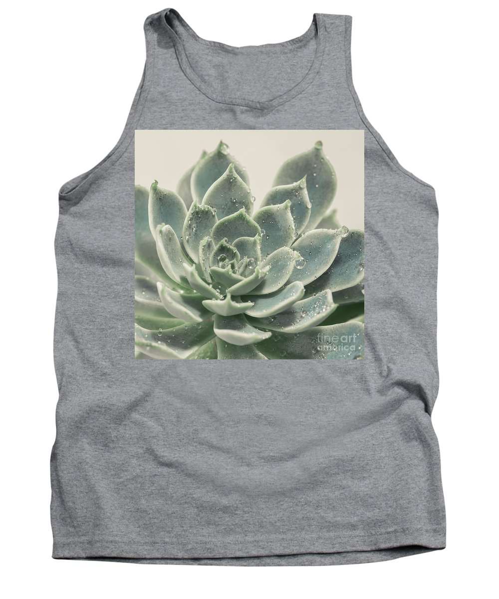 Succulent Tank Top featuring the photograph Blue Green Succulent by Lucid Mood