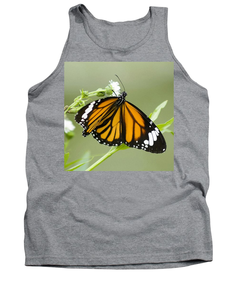 Butterfly Tank Top featuring the photograph Butterfly 009 by Ingrid Smith-Johnsen