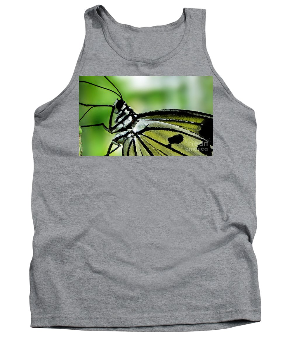 Butterfly Tank Top featuring the photograph Butterfly 4 by Ben Yassa