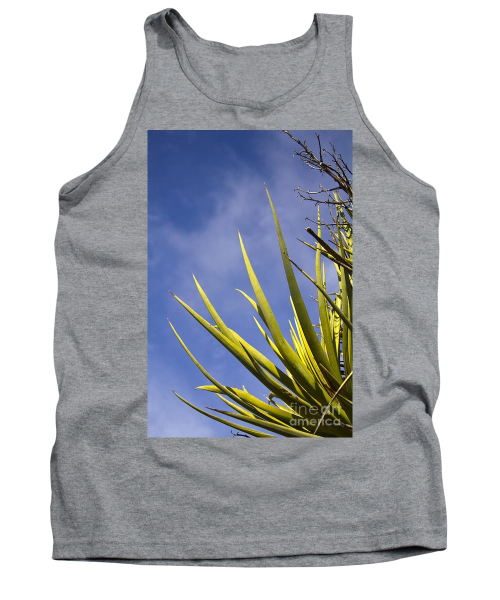 Cactus Tank Top featuring the photograph Cactus Colors by Alycia Christine