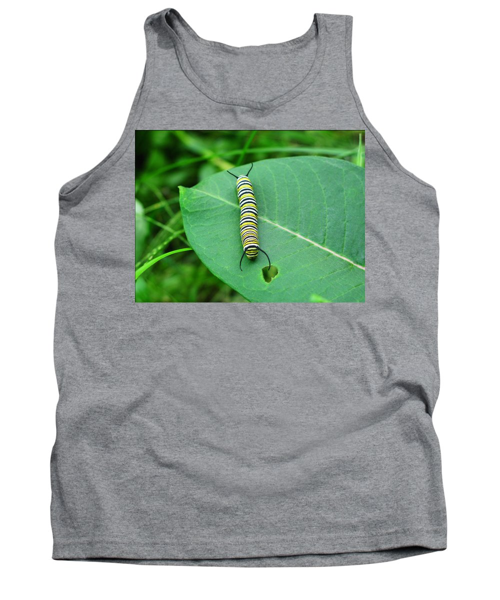 Caterpillar Tank Top featuring the photograph Caterpillar Heart by Brittany Horton
