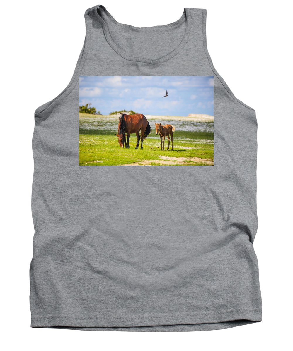 Wild Tank Top featuring the photograph Cedar Island Wild Mustangs 33 by Paula OMalley