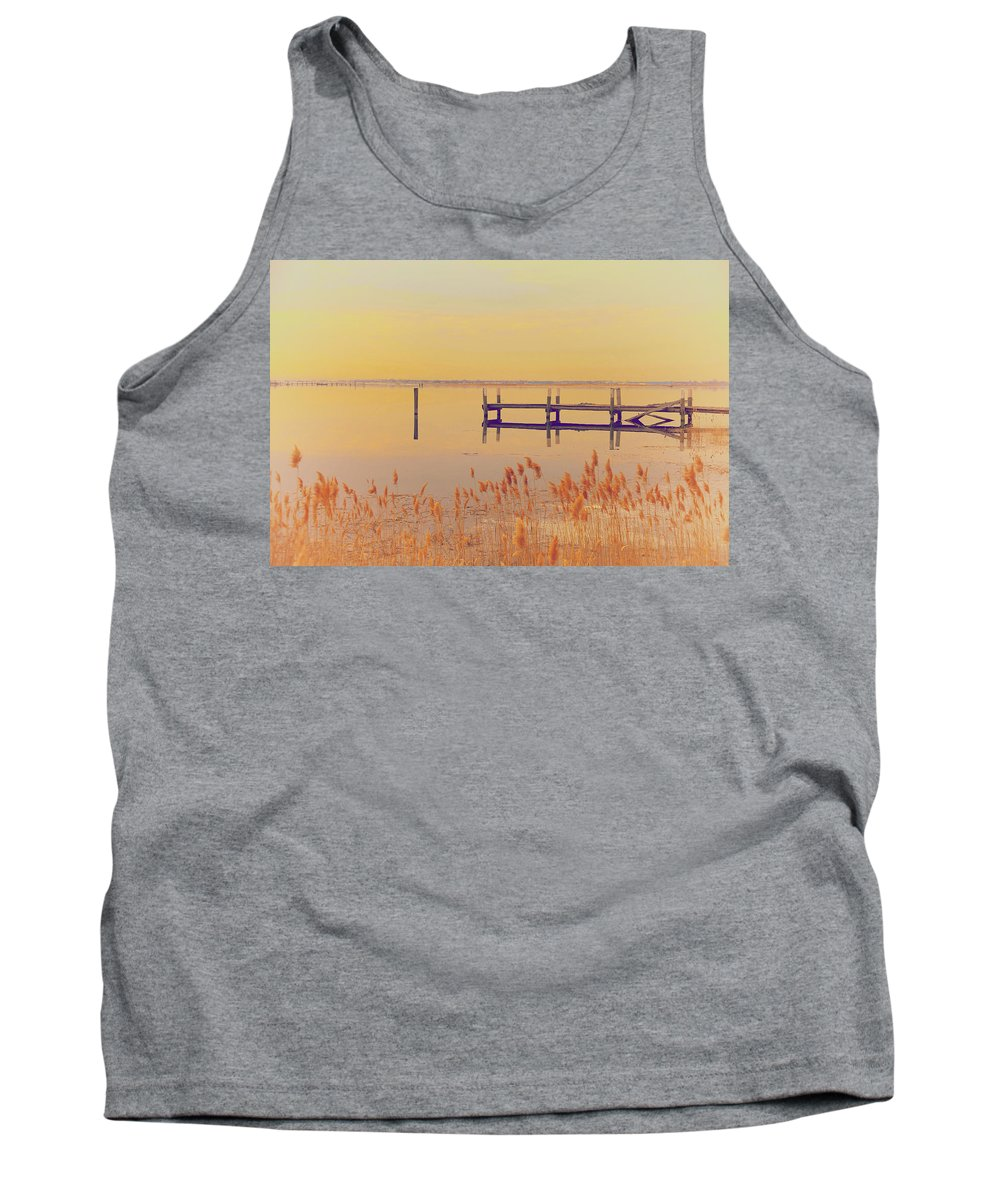 Winter Tank Top featuring the photograph Coastal Winter by Karol Livote