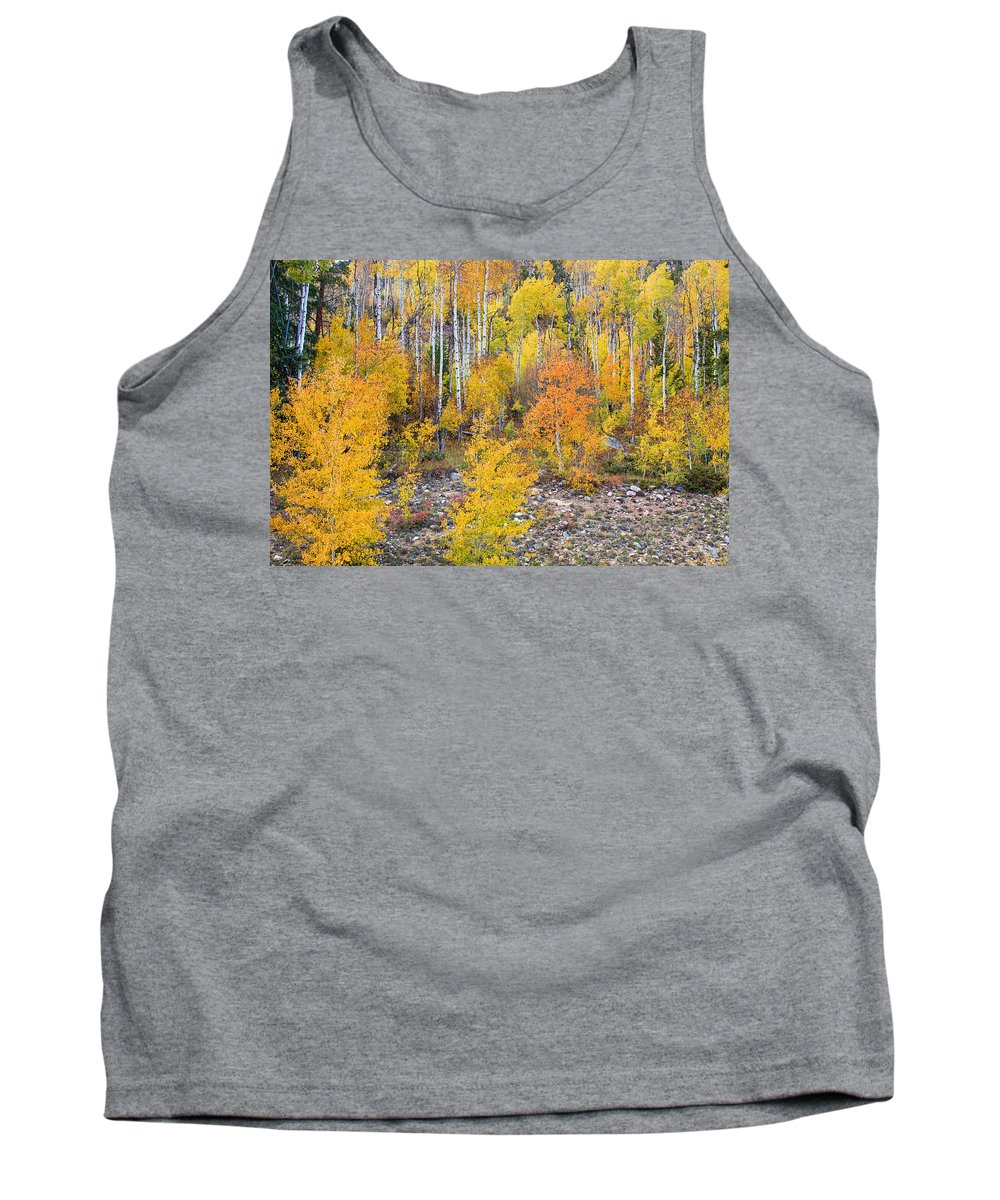 Autumn Tank Top featuring the photograph Colorful Autumn Forest In The Canyon Of Cottonwood Pass by James BO Insogna