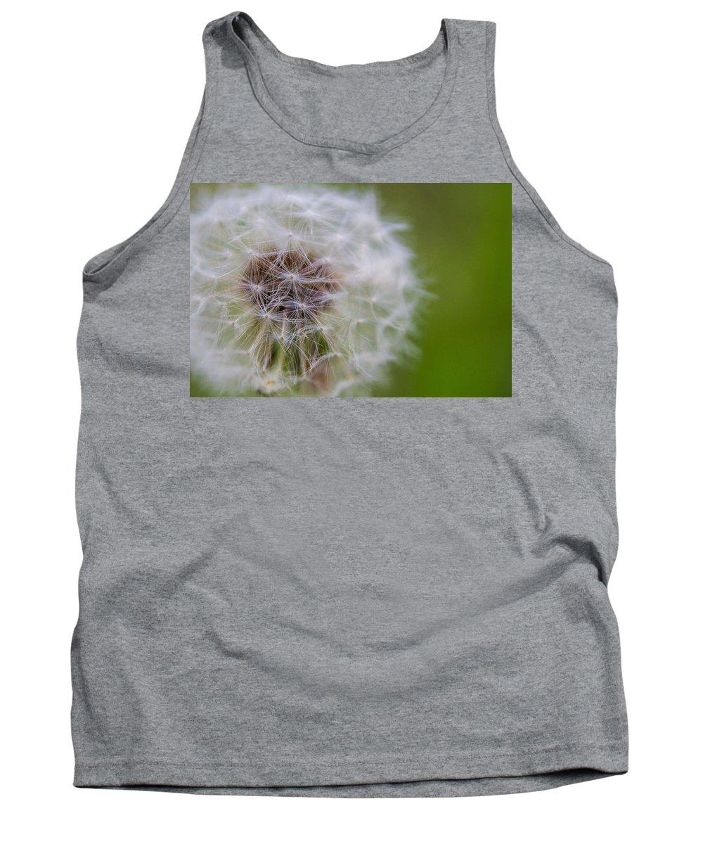 Dandelion Tank Top featuring the photograph ...dandelion by Cory Huchkowski