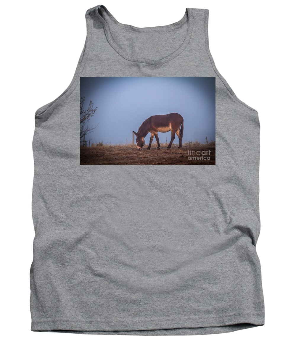 Animals Tank Top featuring the photograph Donkey In The Fog by Robert Bales
