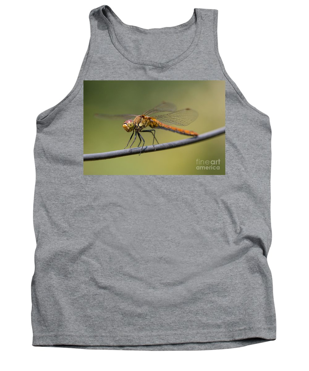 Animal Tank Top featuring the photograph Dragonfly On A Wire by Brothers Beerens