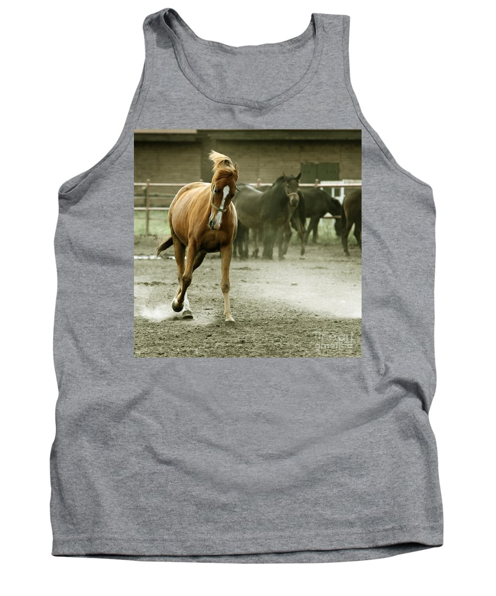 Paddock Tank Top featuring the photograph Dusty Paddock by Angel Tarantella