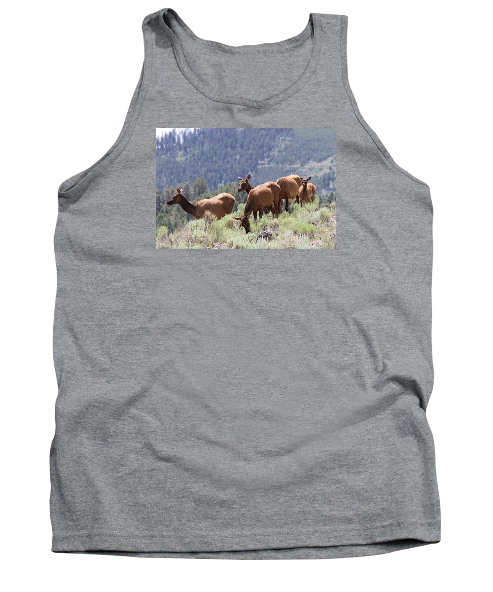 Elk Cow Tank Top featuring the photograph Elk Family - Yellowstone N P by Christiane Schulze Art And Photography