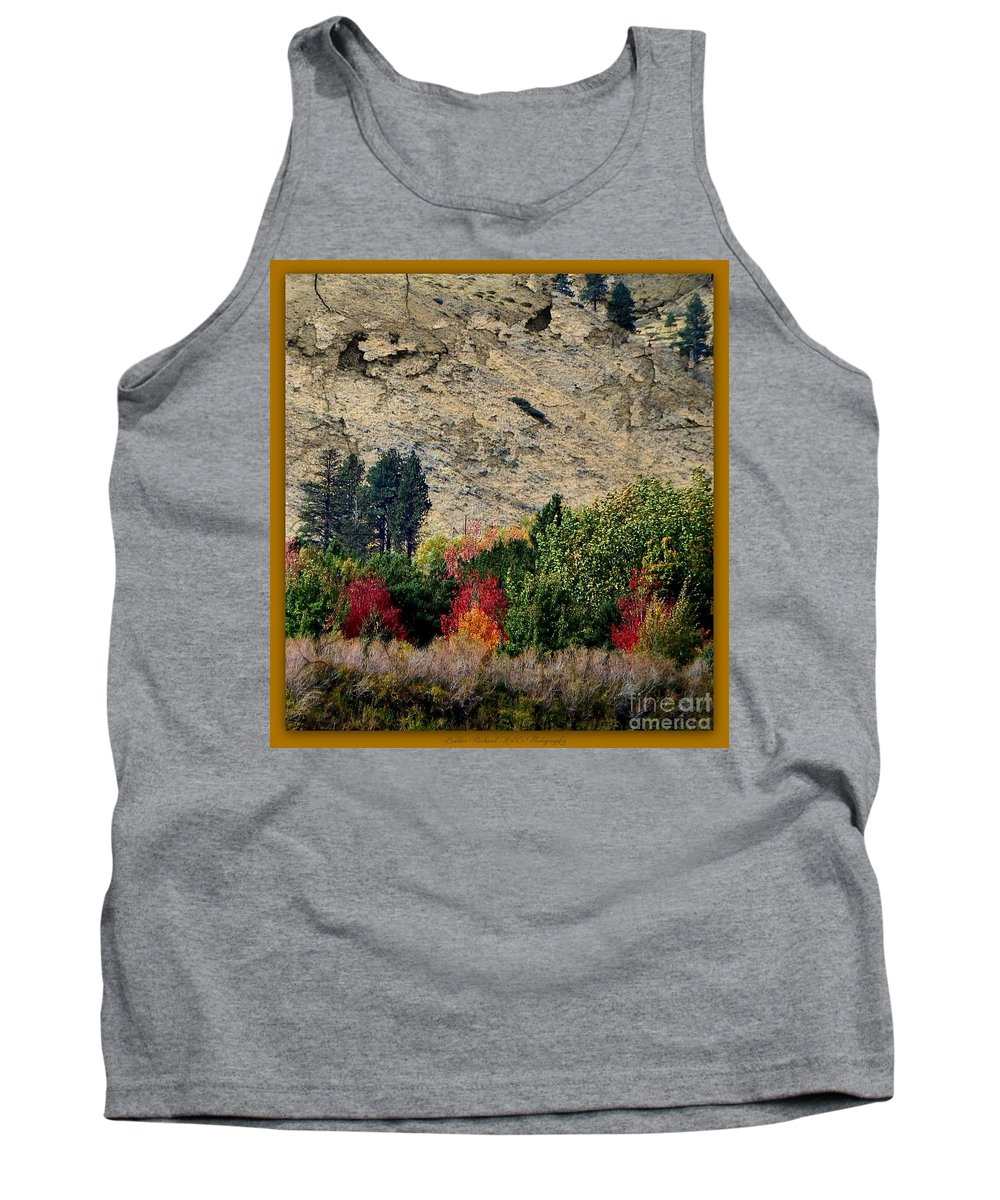 Landscape Tank Top featuring the photograph Fall In Carson Valley by Bobbee Rickard