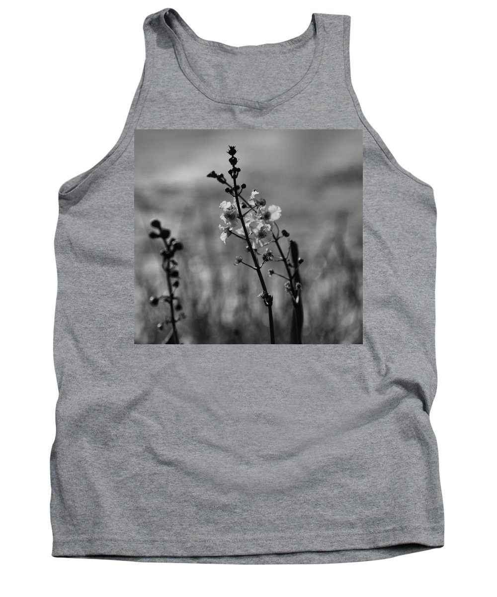 Nature Tank Top featuring the photograph Field Of Dreams by Rosanne Ricard