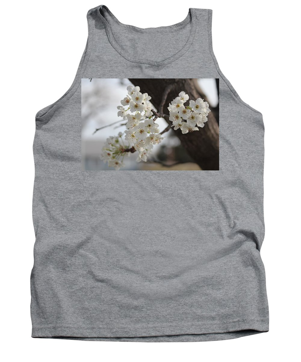 Flowers Tank Top featuring the photograph Flowering Tree by Tony Pacelli