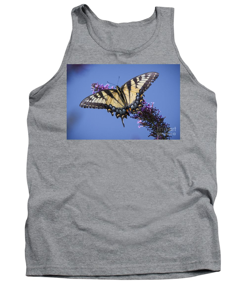 Butterfly Bush Tank Top featuring the photograph Fluted Swallowtail by Ronald Lutz