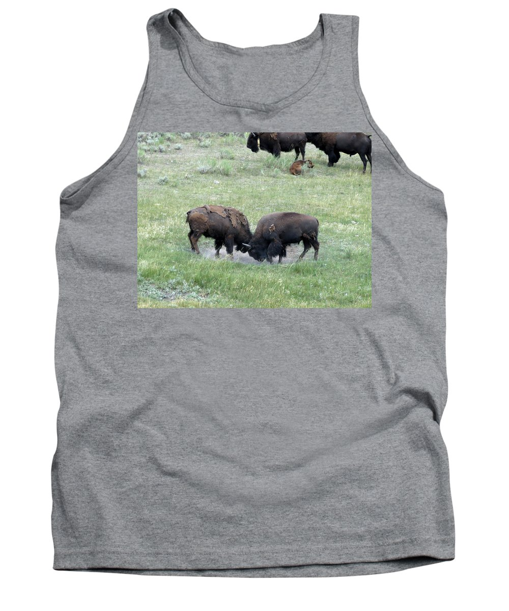 Bison Tank Top featuring the photograph Getting Rough by Laurel Powell