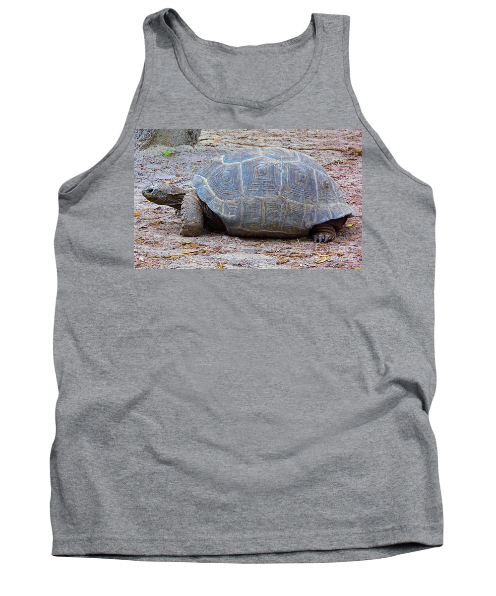 Tortoise Tank Top featuring the photograph The Giant Aldabra Tortoise by D Hackett