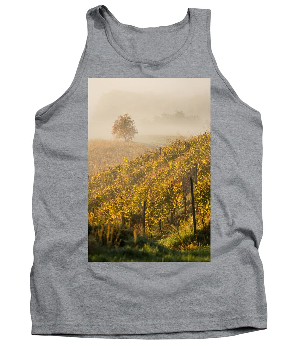 Landscape Tank Top featuring the photograph Golden Vineyard And Tree by Davorin Mance
