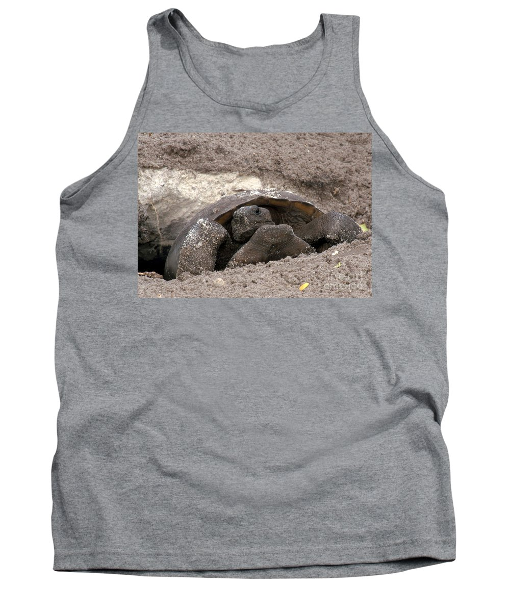 Gopher Tortoise Tank Top featuring the photograph Gopher Tortoise by David Davis