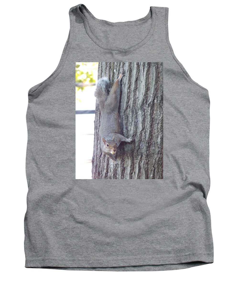 Gray Tank Top featuring the photograph Grey Squirrel 1 by Nina Kindred