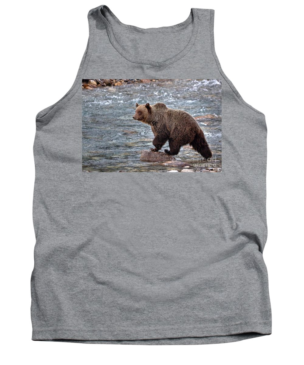 Grizzly Bear Tank Top featuring the photograph Grizzly River by James Anderson