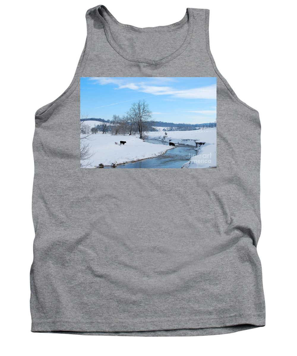 Hays Creek Tank Top featuring the photograph Hays Creek Winter by Todd Hostetter