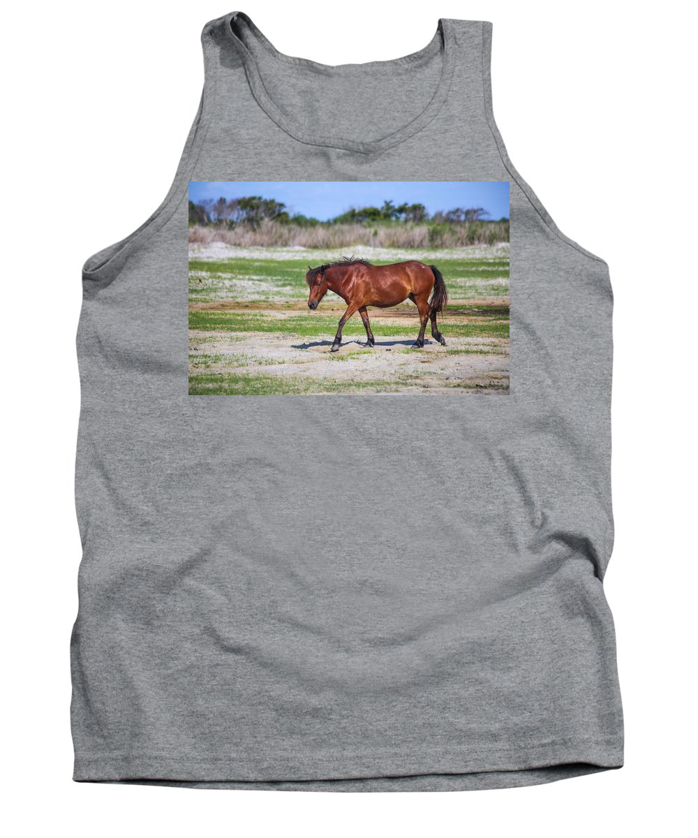 Wild Tank Top featuring the photograph Herd 23 by Paula OMalley