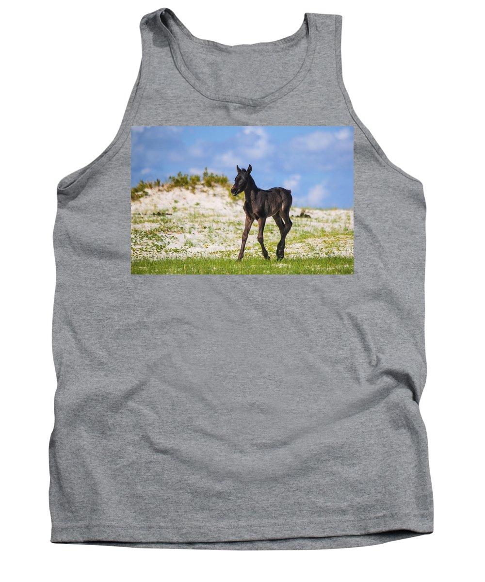 Wild Tank Top featuring the photograph Herd 40 by Paula OMalley