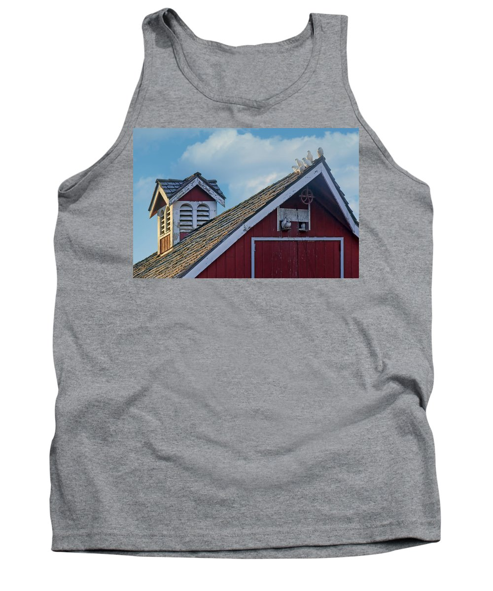Pigeon Tank Top featuring the photograph Home To Roost by Nikolyn McDonald