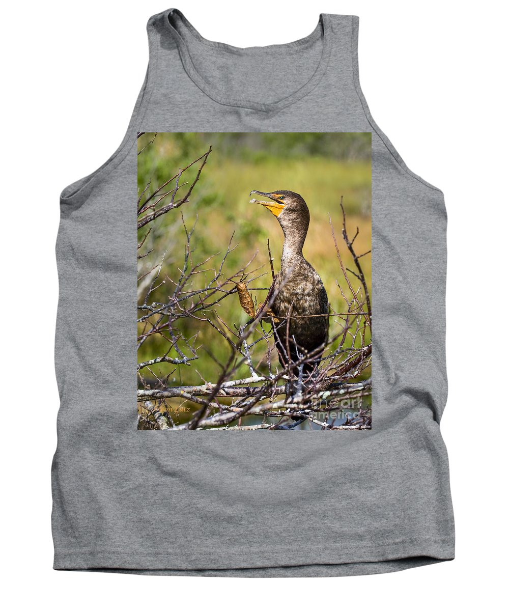 Everglades National Park Tank Top featuring the photograph Immature Cormorant by Ronald Lutz