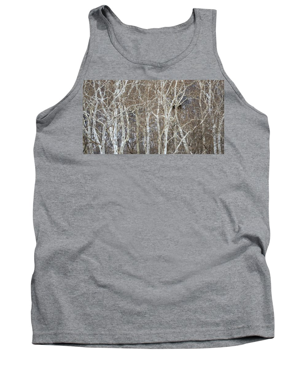 Eagle Tank Top featuring the photograph In The Sycamores by Ian Ashbaugh