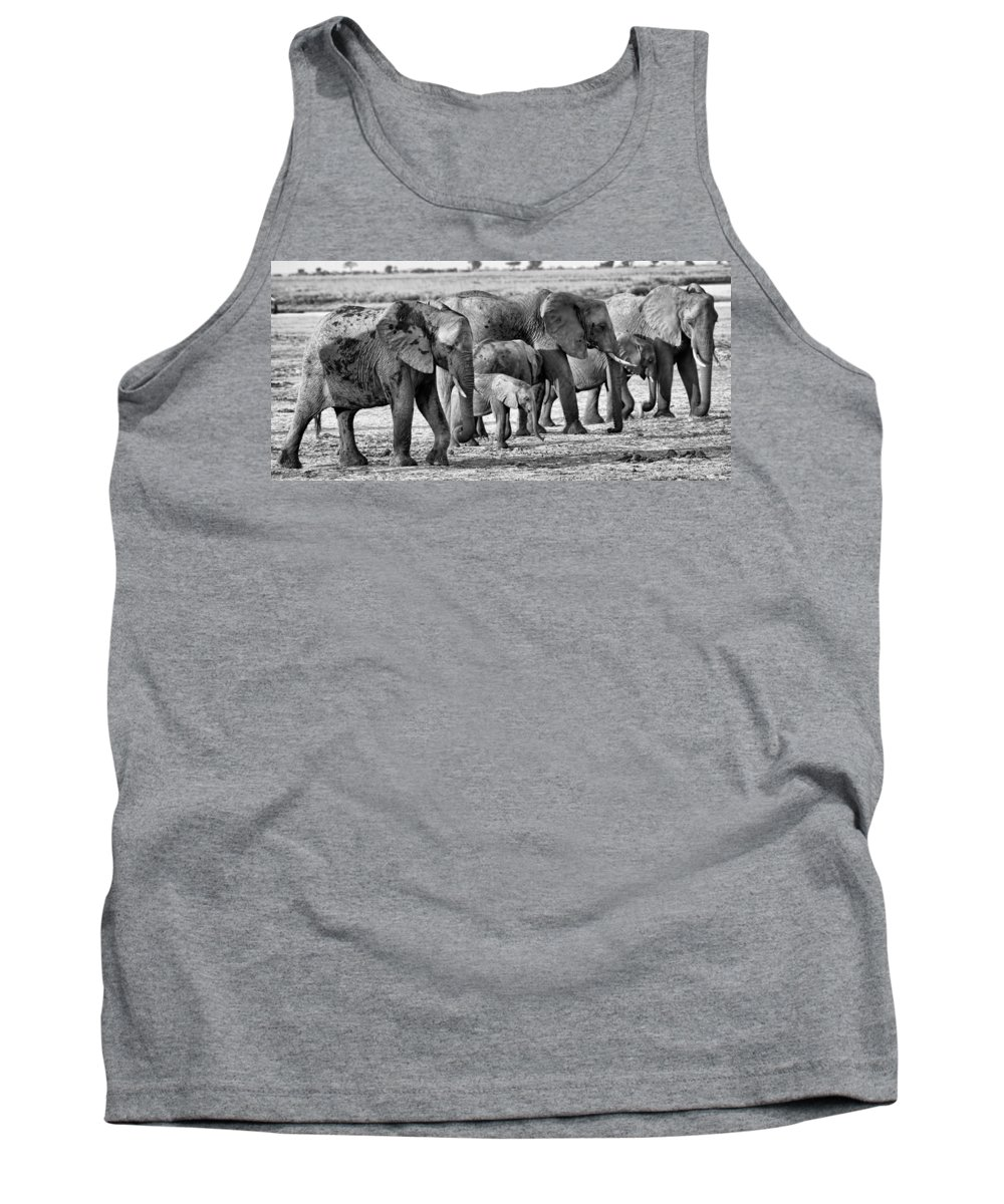 Elephants Tank Top featuring the photograph Kalahari Elephants In Black And White by Amanda Stadther