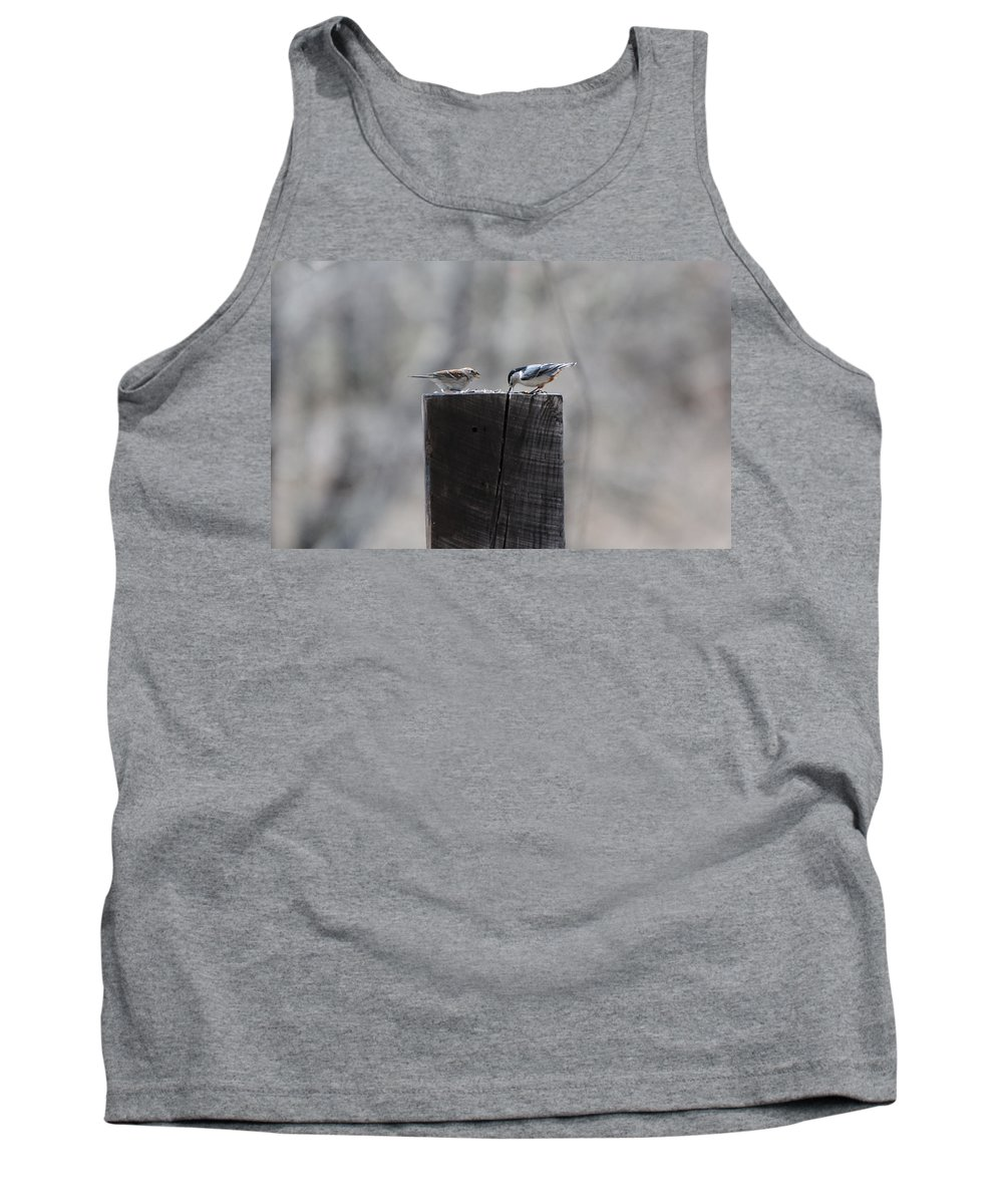 Birds Tank Top featuring the photograph Let's Eat by Scott Angus
