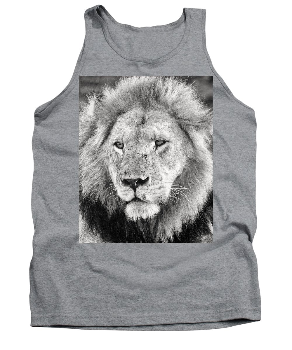 3scape Tank Top featuring the photograph Lion King by Adam Romanowicz