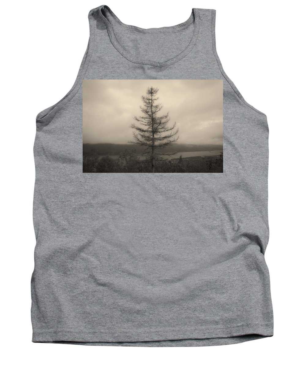Bras D'or Tank Top featuring the photograph Lone Pine And The Bras D'or by David Stone