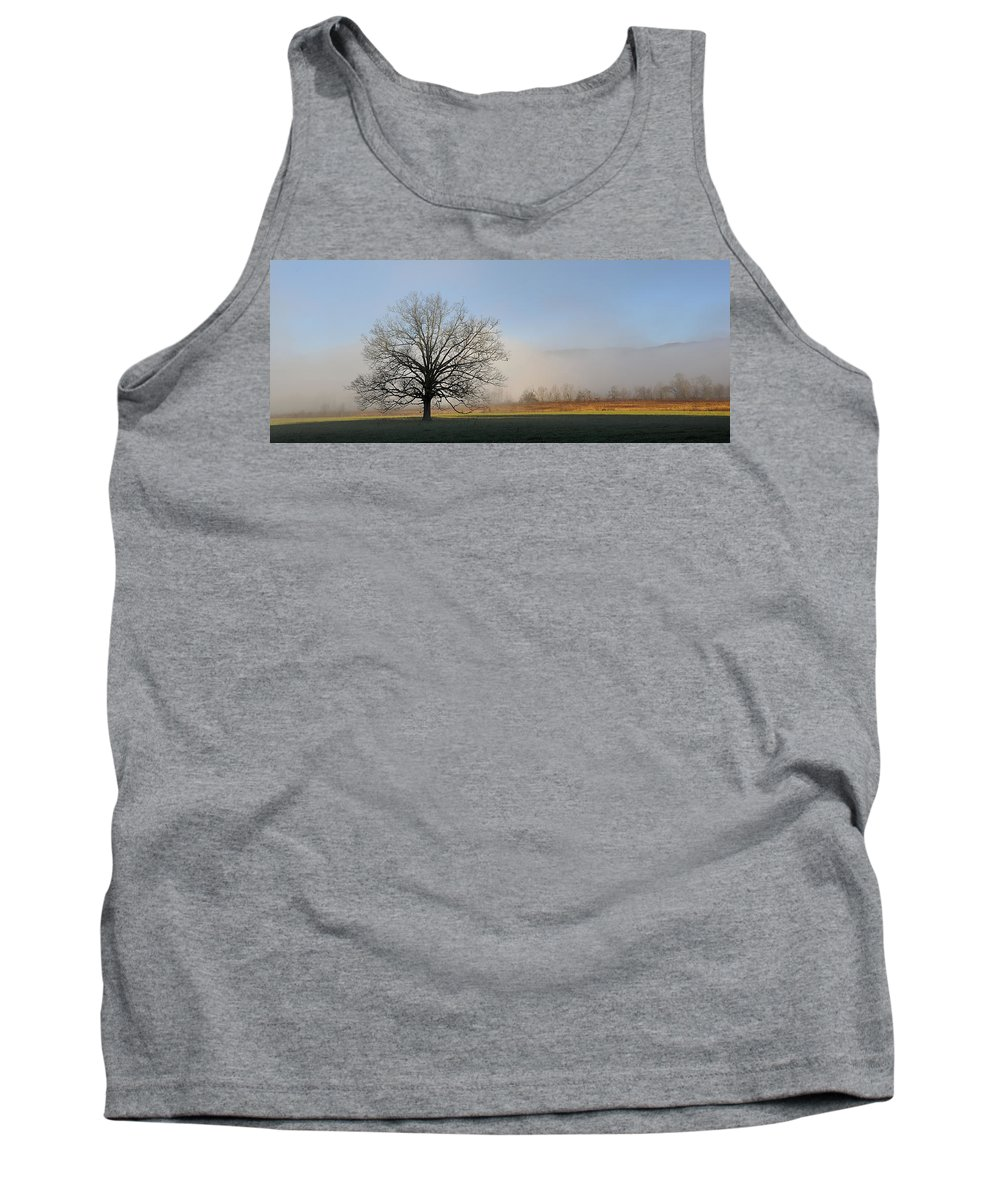 Cades Cove Tank Top featuring the photograph Lone Tree In Cades Cove by Todd Hostetter