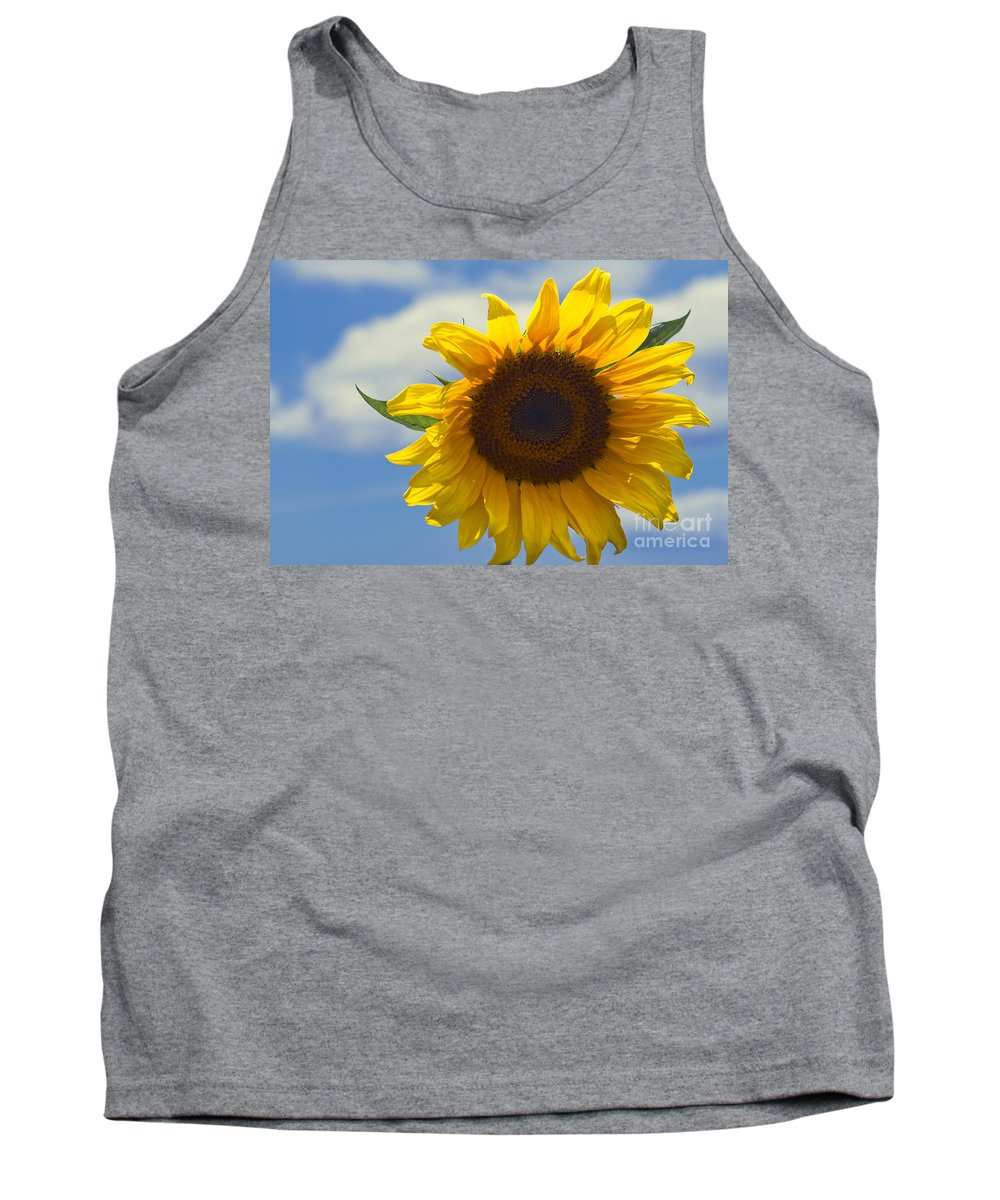Lus Na Greine Tank Top featuring the photograph Lus Na Greine - Sunflower On Blue Sky by Sharon Mau