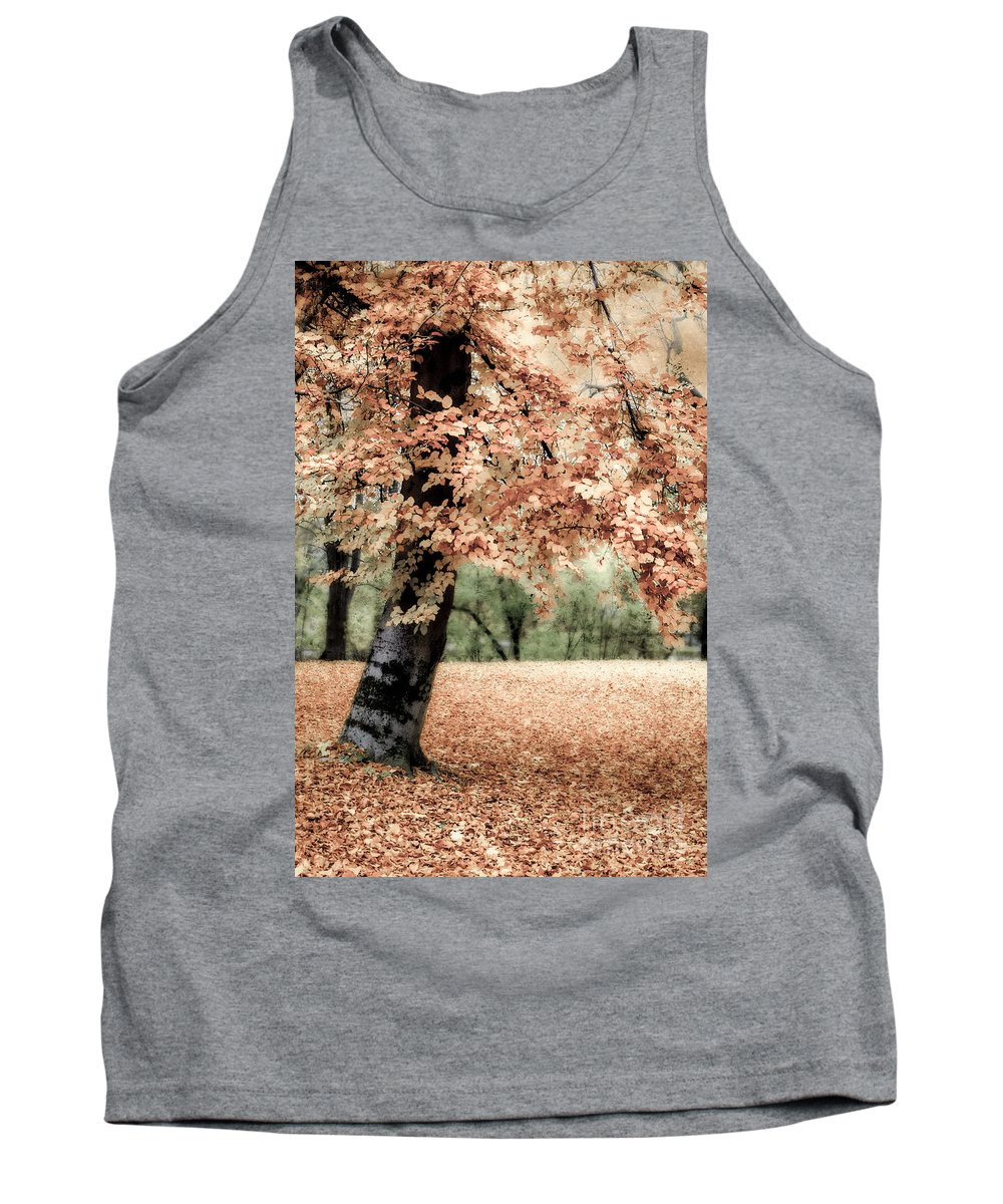Autumn Tank Top featuring the photograph Magical Fall by Hannes Cmarits
