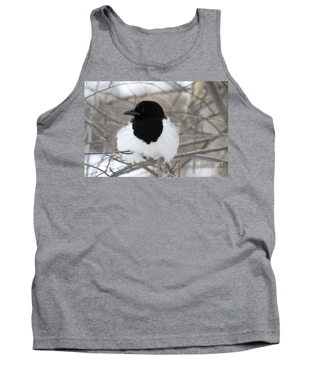 Bird Tank Top featuring the photograph Magpie Profile by Alyce Taylor