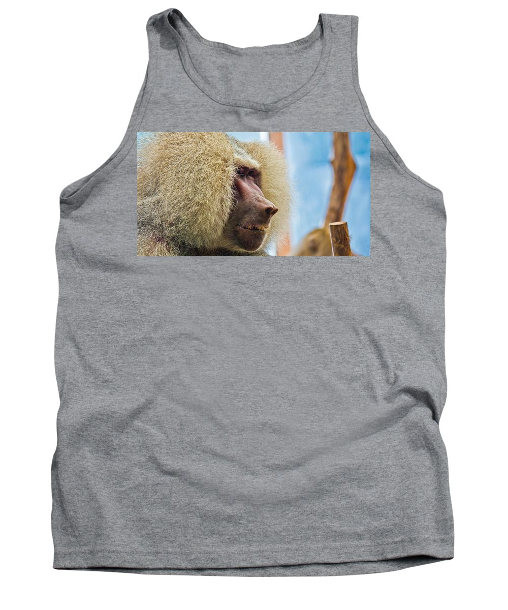 Close Tank Top featuring the photograph Male Baboon by Jonny D