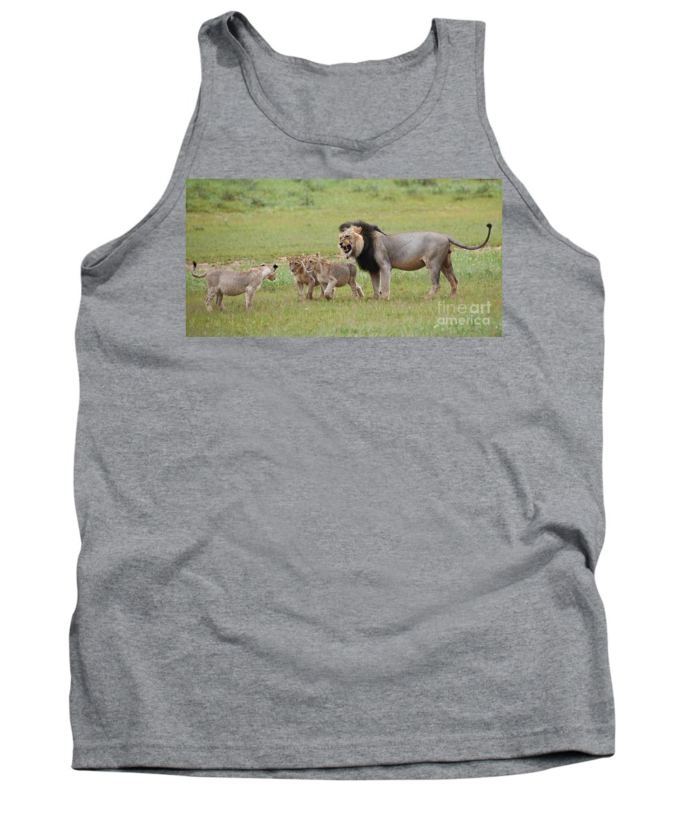 Cub Tank Top featuring the photograph Male Lion Teaches Cubs by Juergen Ritterbach