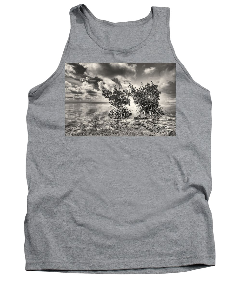 Mangroves Tank Top featuring the photograph Mangroves by Bruce Bain